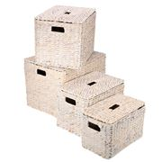 Peter's - Rectangular Lidded Basket Set White Washed 4pce