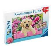 Ravensburger - Me And My Pal Jigsaw Puzzles 2x24pce