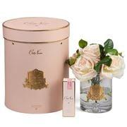 Cote Noire - Ltd Edition Luxury Tea Rose Blush w/ Pink Box