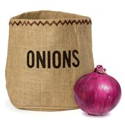 Java - Onion Sack