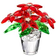 Swarovski - Large Poinsettia