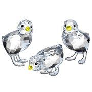 Swarovski - Baby Chickens Set 3pce