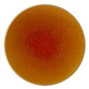 Jars - Tourron Orange Dinner Plate