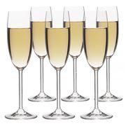 Rona - Bin 2611 Champagne Flute Set 6pce