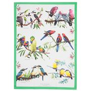 Ashdene - Birds of Australia Mixed Bird Tea Towel