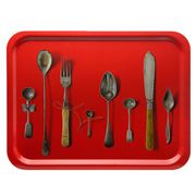 Ary Trays - Cutlery Red Rectangular Tray