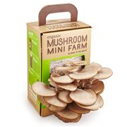 Back to the Roots - Organic Mushroom Mini Farm