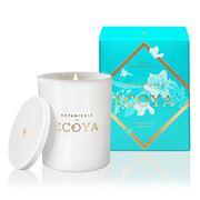 Ecoya - Botanicals Evolution Coral & Narcissus Jar Candle