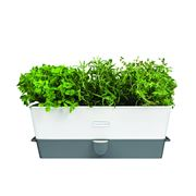 Cole & Mason - Self-Watering Triple Herb Keeper