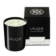 Lalique - Osmanthus: Himalaya Nepal Perfumed Candle