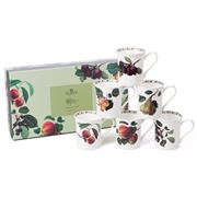 Queens - William Hooker's Fruit Mug Set 6pce