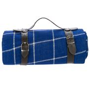 Satara - Blue Checks Picnic Rug