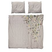 Snurk - Butterfly Double Quilt Cover Set