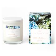 Palm Beach Collection - Greenhouse Interiors Candle 420g