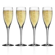 Orrefors - More Champagne Flute Set 4pce