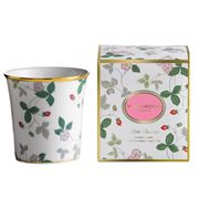 Wedgwood - Little Luxuries Wild Strawberries Candle