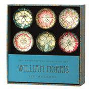 Metropolitan - William Morris Pink and Rose Magnet Set 6pce
