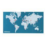 Palomar - PinWorld Maps Light Blue Wall World Map Diary