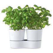 Mepal - Hydro Twin Herb Pots 14cm