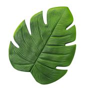 AT - Palm Leaf Placemat