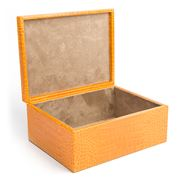 Graphic Image - Large Goldenrod Crocodile Box