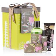 Fikkerts - Royal Botanic Gardens Palm House Gift Box 4pce