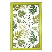 Ulster Weavers - RHS Foliage Linen Tea Towel