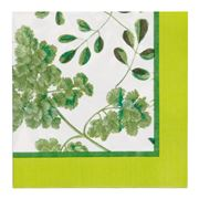Ulster Weavers - RHS Foliage Paper Napkins 20pk