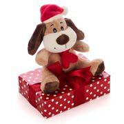 Boz Christmas - Puppy's Got A Present
