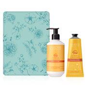Crabtree & Evelyn - Citron & Coriander Nurture Your Skin Set