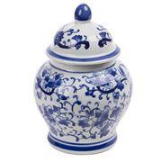 Fancy - Porcelain Jar White & Blue Ming 21cm
