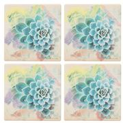 Thirstystone - Watercolor Succulent Coaster Set 4pce