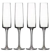 Carrol Boyes - Lumina Champagne Flute Set 4pce