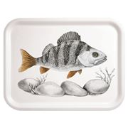 Charlotte Nicolin - The Scout Rectangular Tray 20x27cm