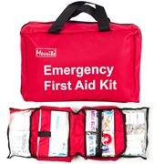 Merrits - Deluxe First Aid Kit 300pce