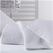 Bas Phillips - Regatta Egyptian Cotton Blanket White Queen