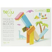 Tegu - Magnetic Wooden Block Set 14pce