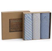 Tamielle - Men's Paisley Handkerchief Set 3pce