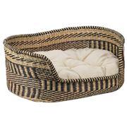 Papaya - Jagger Dog Basket Small