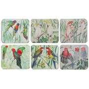 Cinnamon - Australian Parrots Coaster Set 6pce