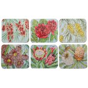 Cinnamon - Bush Blooms Coaster Set 6pce