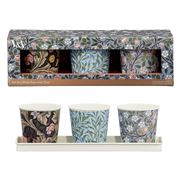 V & A - Plant Pots W/Tray Leicester, Clover and Willow Bough
