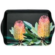 Ashdene - Native Grace Banksia Scatter Tray