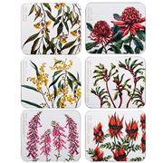 Ashdene - Australian Floral Emblems Coaster Set 6pce