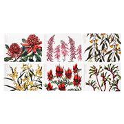 Ashdene - Australian Floral Emblems Placemat Set 6pce