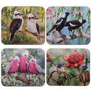 Ashdene - Australian Bird & Flora Coaster Set 4pce