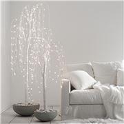 Papaya - Wispy Willow LED Tree 180cm