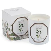 Carriere Freres - Glaesum Amber Candle 185g