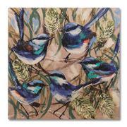 Thirstystone - Banksia & Wrens Coaster