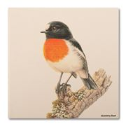 Thirstystone - Scarlet Robin Coaster